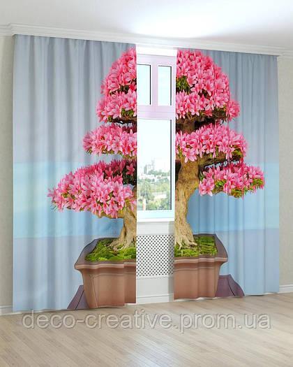 Фотошторы дерево в горшке