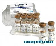 Биофел-М Плюс (Biofel M Plus)