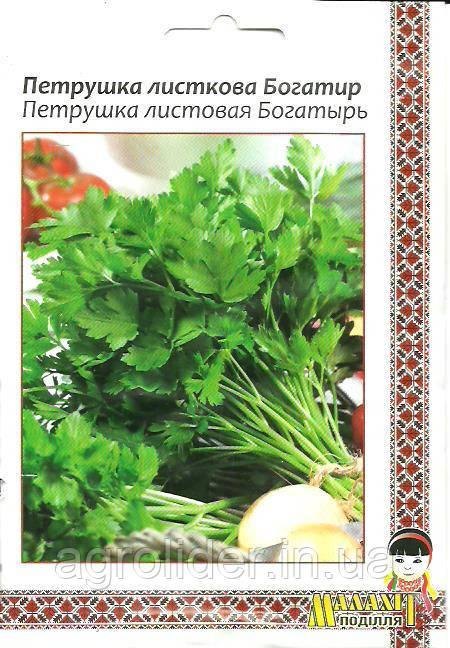 Семена петрушки Листовая Богатырь 10г Зеленая (Малахiт Подiлля)