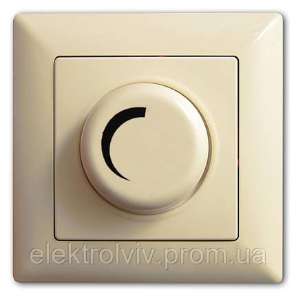 Диммер 1000Вт (светорегулятор), фото 2