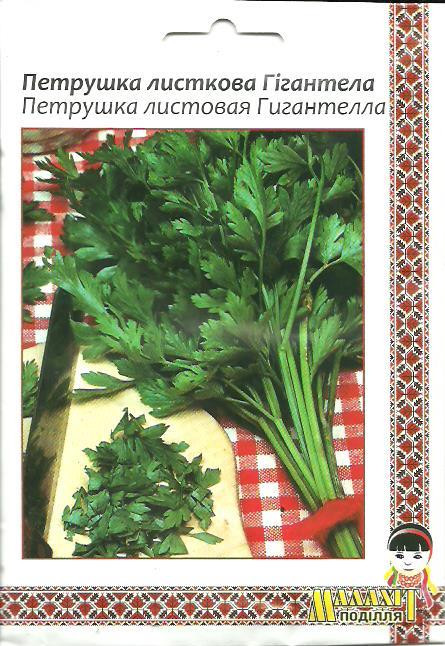 Семена петрушки листовая Гигантела 10г Зеленая (Малахiт Подiлля)