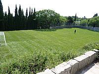 Укладка спортивного газона