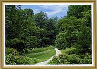 Фотообои, Дубовая роща, 16 листов, размер 194х268см