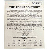 Струны Solid GB1249 Tornado Golden Bronze Heavy 12-49, фото 2