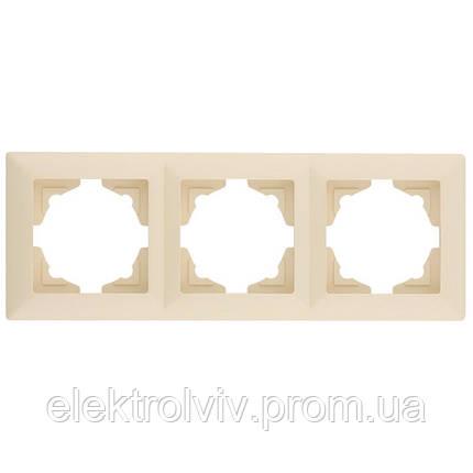 Рамка горизонтальная 3-я, фото 2