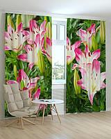Фотошторы цветы лилии розовые
