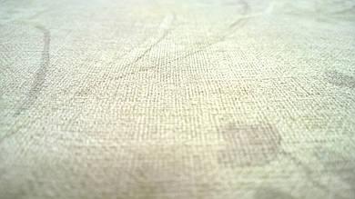 Виниловые обои на флизелиновой основе Florentine 449259