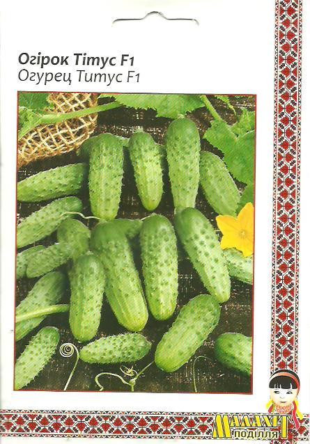 Семена огурец Титус F1 5г Зеленый (Малахiт Подiлля)