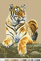 Канва с нанесенным рисунком Тигр