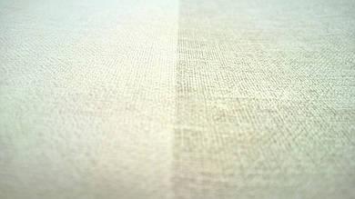 Виниловые обои на флизелиновой основе Florentine 448771
