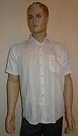 Легкая рубашка AYGEN серого цвета, фото 1