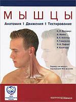 Валериус К.П. и д.р. Мышцы. Анатомия. Движения. Тестирование (перевод с англ. под ред. Цыкунов М.Б.)