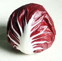 ИНДИГО - семена цикория кочанного фиолетового, 5 000 семян, Bejo Zaden