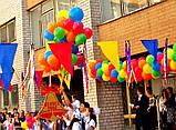 Оформление воздушными и гелиевыми шарами школьных праздников, фото 4