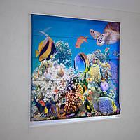 Римские фотошторы экзотические рыбки
