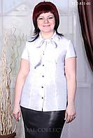 Блуза со съемным бантом р.46-52