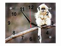 Часы настенные Обезьянка на ветке