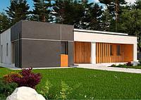 S102 BG.  gроект одноэтажного дома в стиле хай-тек, фото 1