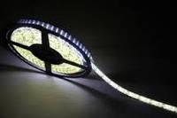 Светодиодная LED лента 5630, W светодиодная лента, белая