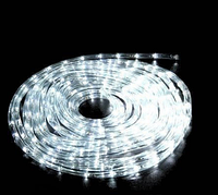 Светодиодная гирлянда TUBE 10m W шланг, белый 10м