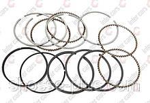 Поршневые кольца Daewoo Lanos 1.5 Nexia Espero 1.5 16V Aveo 1,5 8V - 06г