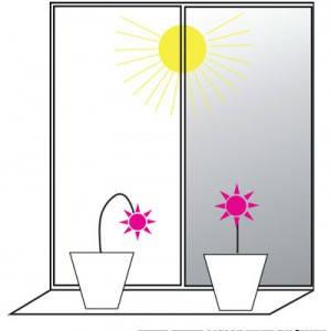 Солнцезащитная пленка