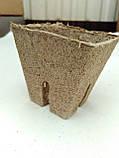 Торфяной стаканчик Jiffy 6*6 см  квадратный, фото 3