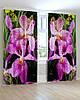 Фотошторы Красивая фиолетовая орхидея на зеленом фоне листа