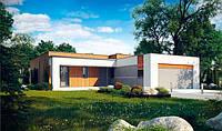 S103. Проект современного одноэтажного дома с плоской крышей, фото 1