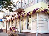Оформлення повітряними кулями фасадів будівель., фото 3
