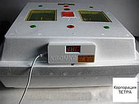 Бытовой инкубатор Квочка МИ-30 с цифровым датчиком температуры