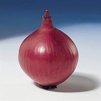 РЕД БАРОН - семена лука репчатого красного 10 000 семян, Bejo Zaden, фото 1