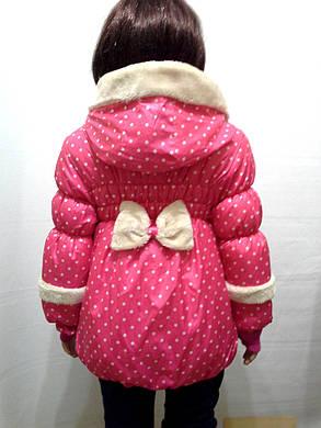 Демисезонная куртка горошек, фото 2