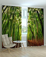 Фотошторы пейзажи бамбуковый лес