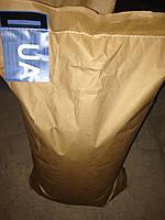 Семена кукурузы Днепровский 181 СВ (Пивиха 181)