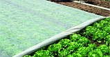 Агроволокно Agreen белое в пакете (17 г/м2, 3,2х10 м), фото 3