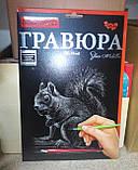 Гравюра А4 Белка Серебро, фото 2