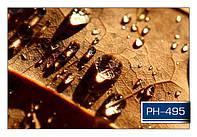 ph_495.jpg