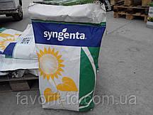 Подсолнух Syngenta NK Brio