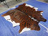 Шкура коровы для интерьера тигр на коричнево белом фоне, фото 3