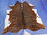 Шкура коровы для интерьера тигр на коричнево белом фоне, фото 2