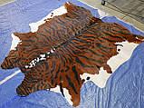 Шкура коровы для интерьера тигр на коричнево белом фоне, фото 4
