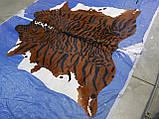 Шкура коровы для интерьера тигр на коричнево белом фоне, фото 5
