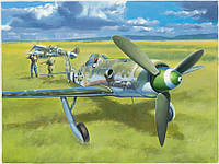 Сборная модель самолета Focke-Wulf 190D-13  1\48      HOBBY BOSS, фото 1