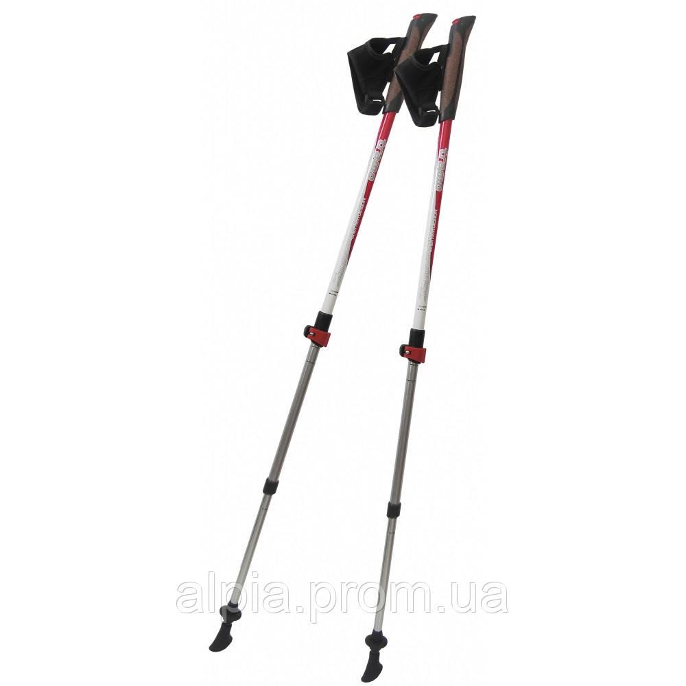 Палки для скандинавской ходьбы Tramp TRR-004 Compact пара