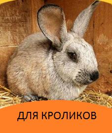 Корми для кроликів