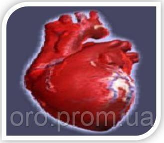 Препараты для укрепления сердечной мышцы