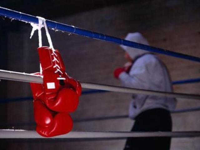 перчатки для бокса, перчатки для единоборств, перчатки для каратэ
