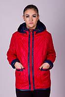 Куртка женская большого размера  Ocean №8502.