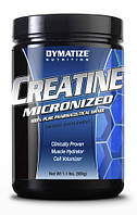 Креатин Dymatize Creatine (500 g)